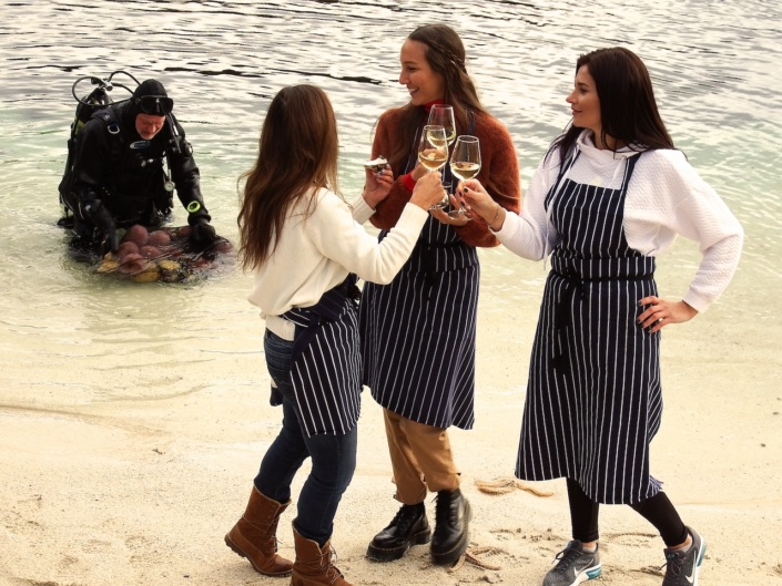 Bergen Fjord diving with private cooking experience
